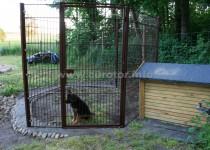 Hundezwinger
